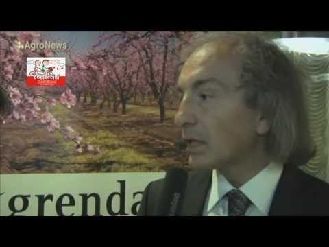 Christos D. Katsanos on Tomaccini (Sustainable Agriculture & Bioeconomy Conference 2013) - YouTube