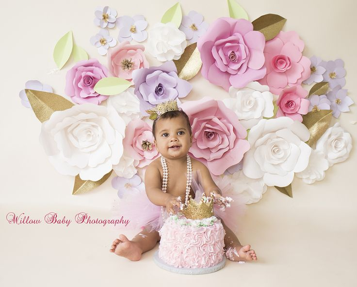 One year cake smash willow baby photography