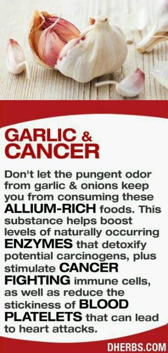Garlic Health Benefits #garlicrocks
