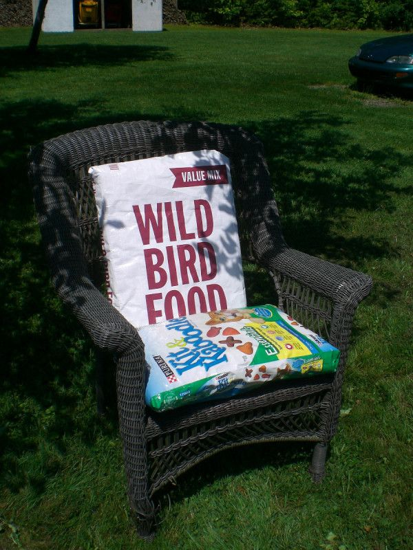 Instead of watching my outdoor upholstered pillows on my many chairs become faded and mildewed, I decided to stuff them into recycled pet food bags!