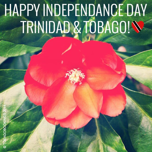 Happy Independence Day Trinidad and Tobago! We hope that everyone enjoys and celebrates to the fullest. With love, from Tobago Bookings.   #TrinidadandTobago #TrinidadandTobagoIndependence #independenceDay #Trinidad #Tobago #TobagoBookings #TnTIndependence