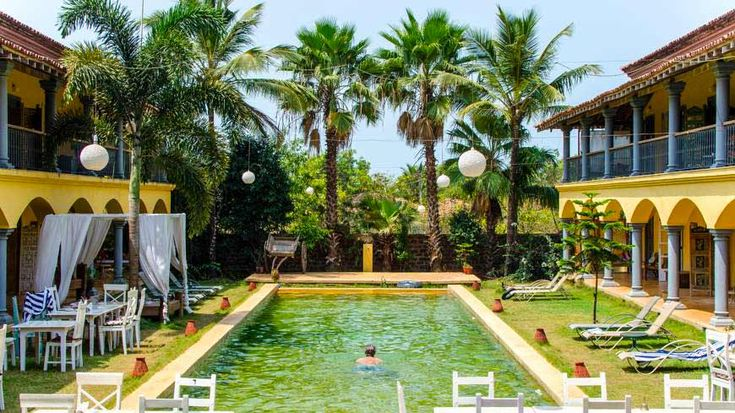 *The GORGEOUS pool at Sur La Mer, boutique hotel in north Goa (it's very green in the pic but not usually so!). To enquire or book: https://www.tripzuki.com/hotels/sur-la-mer-goa/