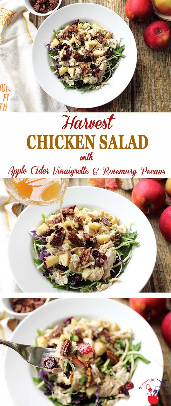 Harvest Chicken Salad screams fall! Chicken cooked…