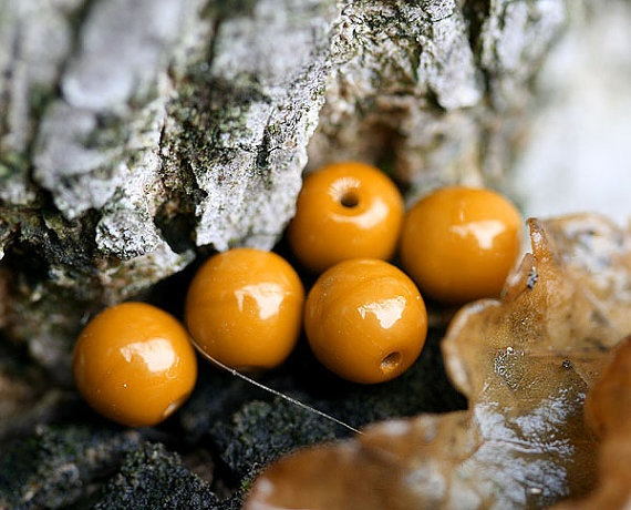 Czech beads in Mustard Yellow woodland spacers  6mm by MayaHoney
