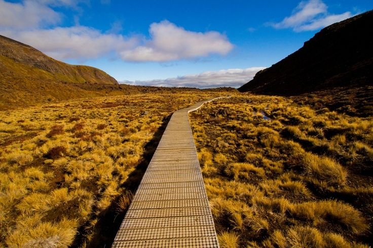 Great Walks of New Zealand-> Planning your trip to New Zealand