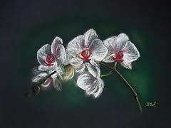 Картинки по запросу рисунки цветы пастелью темный фон