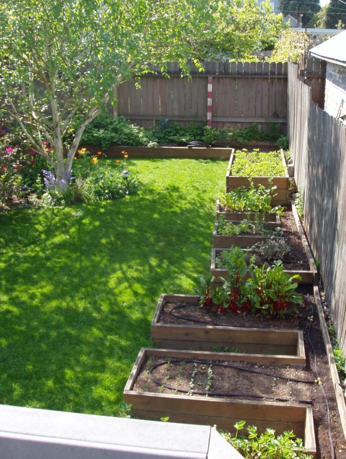 Garden Design Backyard best 20+ backyard vegetable gardens ideas on pinterest | vegetable