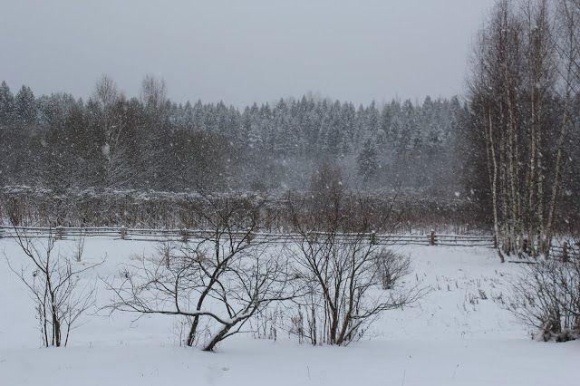 Жизнь горожанки в деревне: (+6)   ...и о погоде!