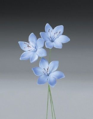 18 Agapanthus Gum Paste Flowers for by AllAmericanElegance on Etsy, $19.97