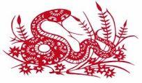 Compatibilidad serpiente Horoscopo Chino