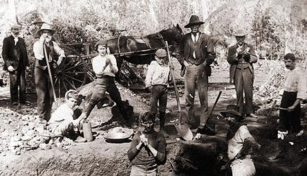 The Australian Gold Rush - Diggers (State Library of NSW)