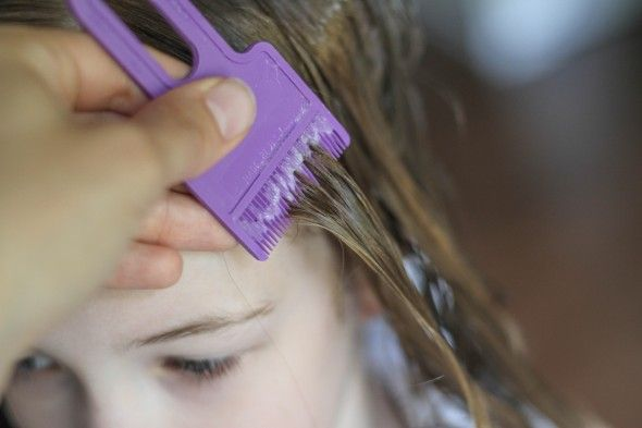 How Do You Get Lice in Your Hair?