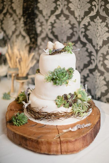 0464IMG_8606 | Our chocolate Guiness cake with cream cheese … | Flickr