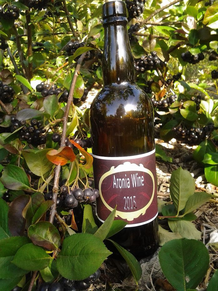 Aronia Wine recipe