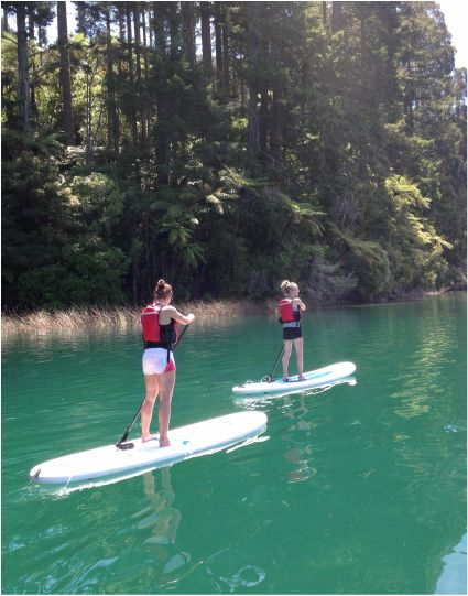 Paddle board tours