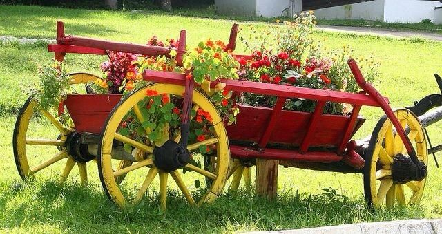 Love the red and yellow * A Texas Girl's Favorites