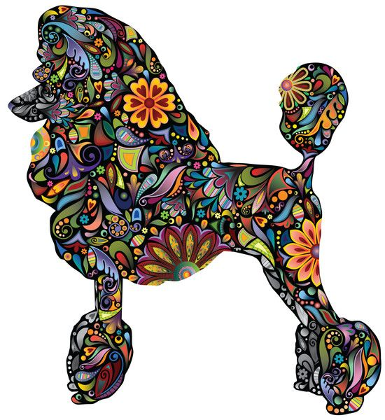 - Standard Poodle Dog decal in a multicolored floral pattern - Available in 4 sizes: Small 10.6w x 11.2h, Medium 14w x 14.8h, Large 22.5w x 23.6h, X-Large 37.5w x 39.3h (sizes in inches / Large is rea