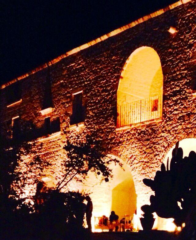 Cacti in silhouette at the Masseria Cervarolo
