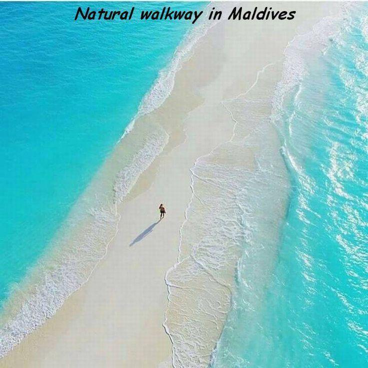 몰디브의 산책길