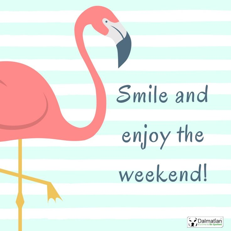 Smile and enjoy the weekend. Flamingo. Weekend quotes. Positivity.