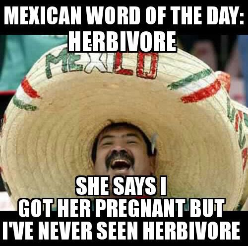 Funny Meme Words : Pin by james ehlers on mexican word of the day pinterest