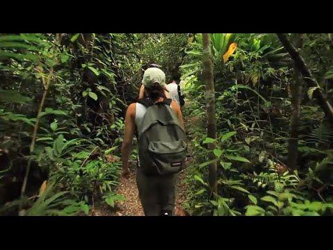Extraordinary video of Costa Rica by Noofoo Media!