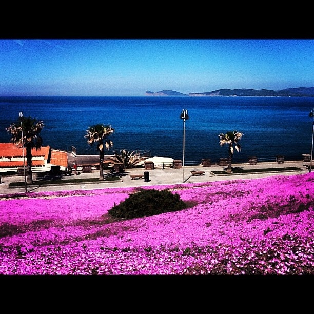 La fantastica vista su Capo Caccia da Villa Mosca ad Alghero - @sardegna_marenostrum- #webstagram