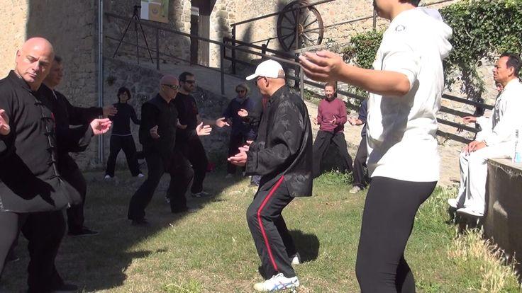 Corsi di Taiji Quan con il M° George Xu: Lateral Extension - Montese 201...