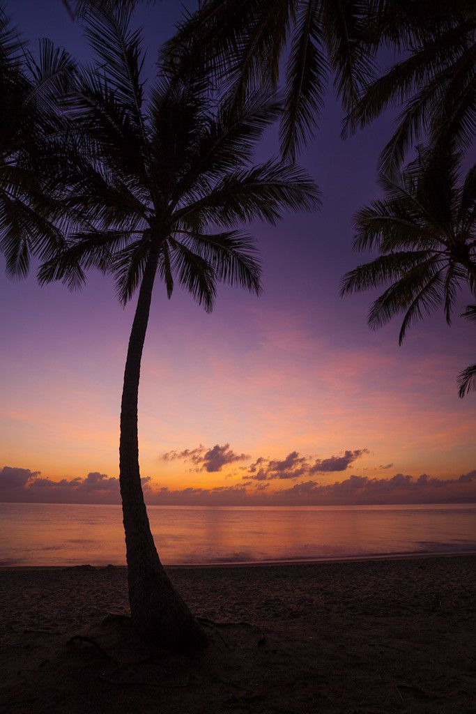 Sunrise - Palm Cove, Cairns, Queensland, Australia... I love Cairns... it was the ultimate hippy spot... or was.
