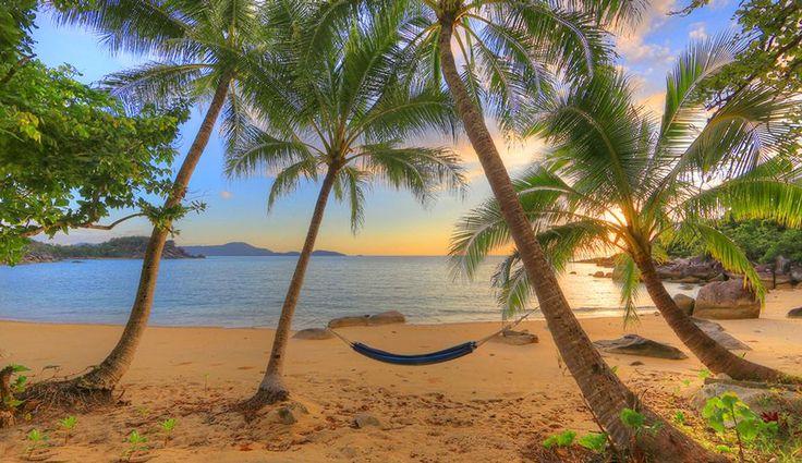 Hammock on a tropical beach | Honeymoon Travel | Pinterest