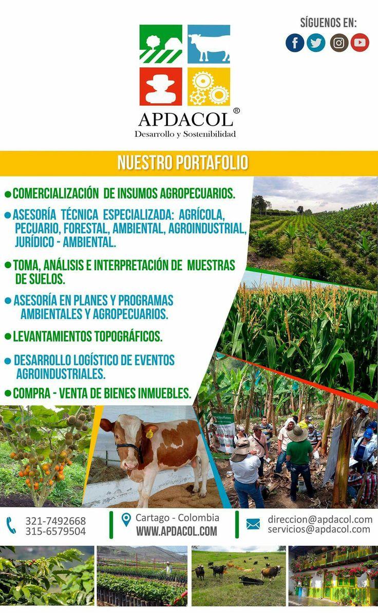 En Apdacol®  tenemos un Portafolio integral que busca brindar soluciones que mejoren la productividad y sostenibilidad de su actividad en el sector agropecuario, forestal y ambiental colombiano.  Ingresa a nuestro sitio web www.apdacol.com para conocer mas información. SOMOS DESARROLLO Y SOSTENIBILIDAD. #Apdacol.