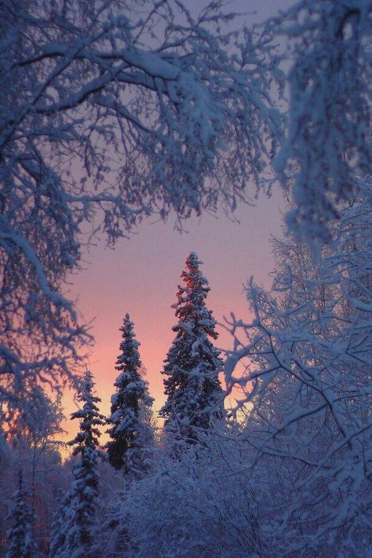 картинки вдохновляющие зимние увидеть получившийся