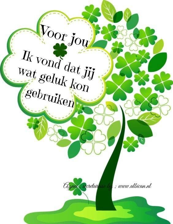Citaten Voor Beterschap : Best images about lucky four leaf on pinterest