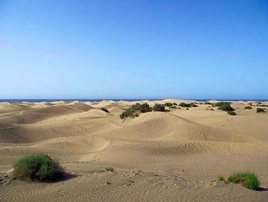 Isole Canarie: quale scegliere? #giruland #diariodiviaggio #canarie #tenerife #fuerteventura #grancanaria #lanzarote #isola #viaggi #travel #spiaggie #mare #oceanoatlantico