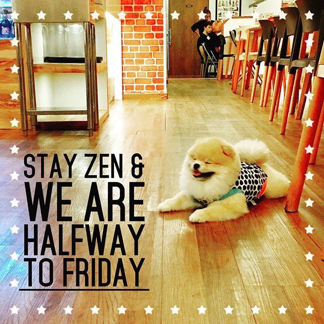 Thanks @bijou_poofypuff mummy for tagging me for #perfectfacechallenge  Tagging @ooithan.thepom @gomi_gomi_gom @bub_z @_butter_the_pom @bakhu_bullet @kinkinthepom @kyzer_l @yukidoo_ to show us the cute faces of your!! #mydog #doglife #doglover #dogstagram #love #pom #pomeranian #instadog #instapet #weeklyfluff #thedailypompom #coolangel369  #sgpomkakis #ilovemydog #cutedog #cutepetclub #강아지 #강아지스타그램 #애완견 #반려견스타그램 #개스타그램 #포메라니안 #포메 #ポメラニアンが世界一可愛い #愛犬 #ポメラニアン部 #ポメ #ワンコ #犬との暮らし
