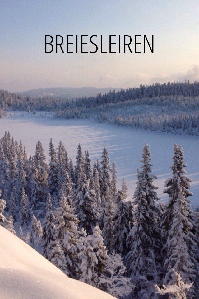 Check out my story on Steller