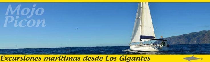 Desde Los Gigantes en el Mojo Picon Navegue por la costa oeste de Tenerife en un barco de vela de 13.60 mts de eslora de lujo y confort,el Mojo Picon. Salidas en mañana y tarde y partiendo desde Los Gigantes observaremos ballenas,delfines y tortugas en su habitat natural,en grupos reducidos de 9 pasajeros. Excursiones diarias y Charter privado Informacion y reservas : +34 633 915 733 http://www.echeydetours.com/79/mojo-picon