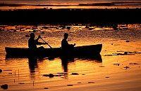 Mareeba Wetlands Tour | Atherton Tablelands | Queensland | Australia