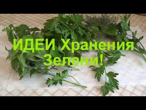 Идеи длительного ХРАНЕНИЯ зелени!✔Елена Матвеева
