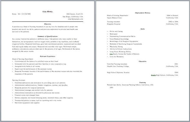 2 Page Resume Format Examples Mini Mfagency Co 2 Page Resume Format Examples Mini Mfagency Co 2 Good Resume Examples Resume Examples Resume Format Examples