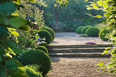 Rosemary Alexander's Hampshire gardenAlexander'S Hampshire, Gardens Inspiration, Boxes Topiaries, English Gardens, Outdoor, Backyards Ideas, Beautiful Atmosphere, Gardens Room, Gardens Schools