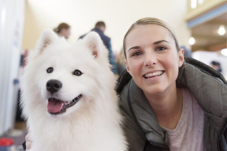 Explore DogLoversShow's photos on Flickr. DogLoversShow has uploaded 2015 photos to Flickr.