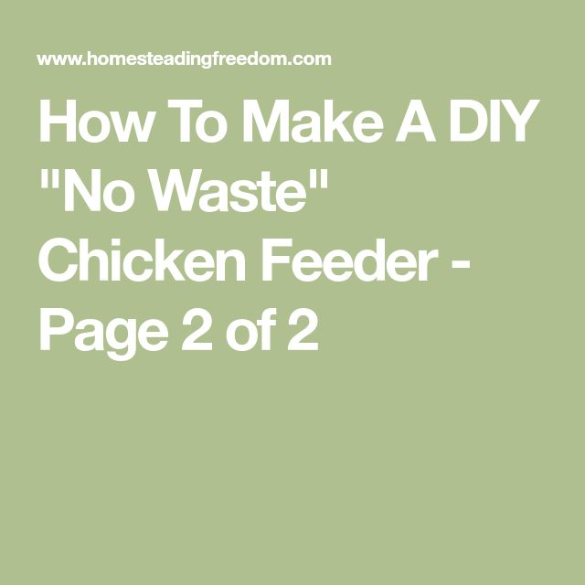 "How To Make A DIY ""No Waste"" Chicken Feeder - Page 2 of 2"