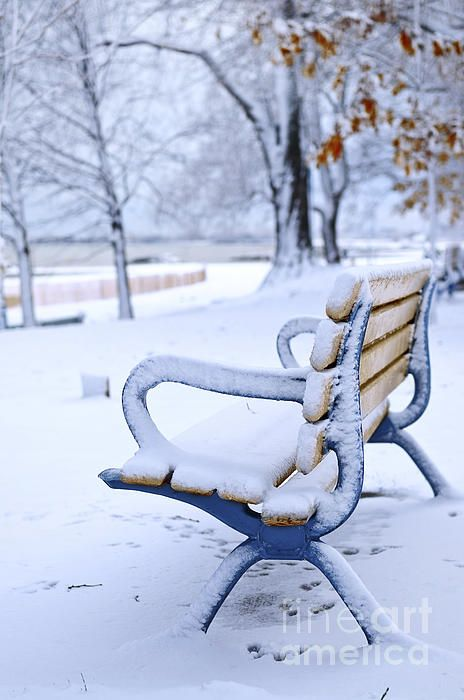 Winter bench covered with snow in an empty park. Beach area, Toronto, Canada.  Elena Elisseeva