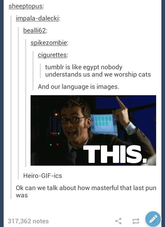 doctor who fandom tumblr - Google Search