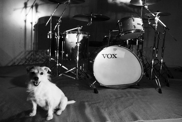 girl guards the drums.