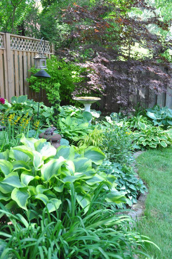A Shade Garden In Oakville Ontario Shade Garden Small Back Gardens Garden Planning