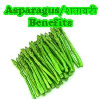 http://www.indianbazars.com/2017/06/asparagus-or-shatawri-benefits.html What is Asparagus or shatawri?, uses of shatawri, advantages of asparagus, क्या है शतावरी, क्या फायदे होते हैं शतावरी के.