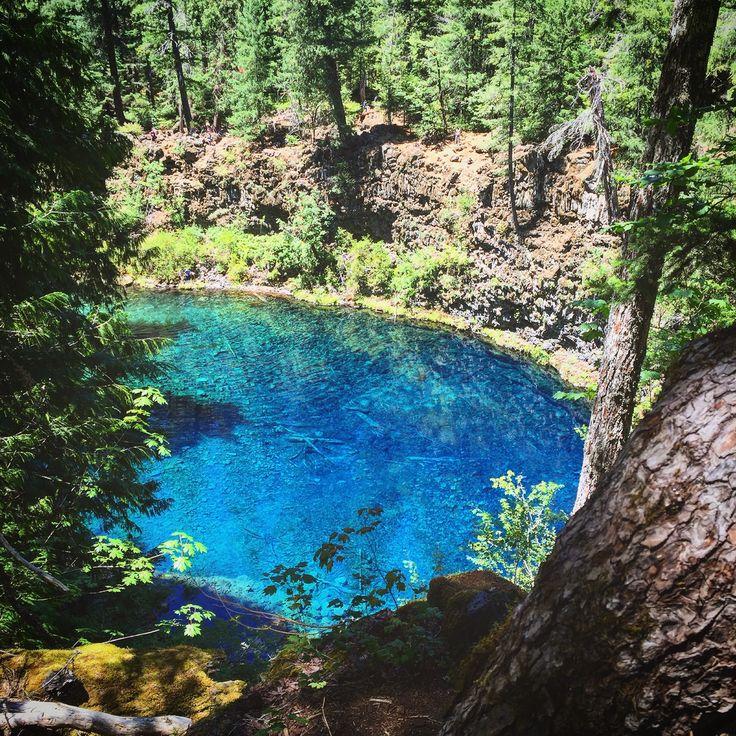 Best 25+ Tamolitch pool ideas on Pinterest Blue pool oregon