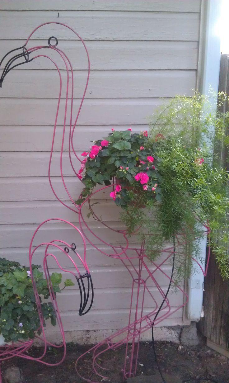Pink flamingo  #gardening #outdoor plants